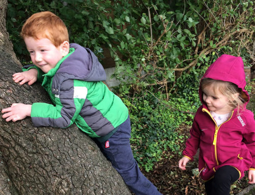 Forest Schools Approach